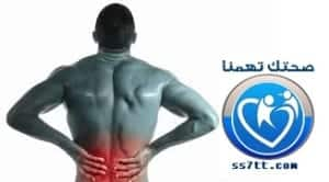 اهمية عضلة القطنية