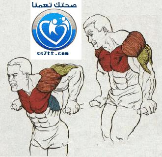 تمرينة تحديد عضلة البنش