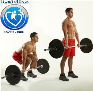 تمارين لعضلة القطنية