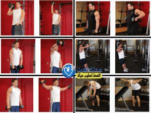 تمارين عضلة الكتف (Shoulders (deltoids
