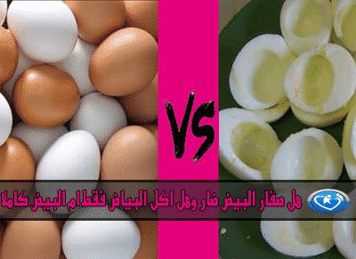 صفار البيض ام البيض كاملا