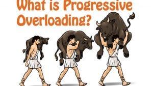 مبدأ الزيادة الدورية للاحمال Progressive Overloading