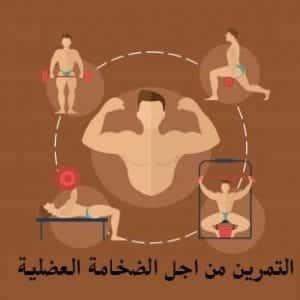 كيفية زيادة الوزن والحصول على الضخامه العضلية