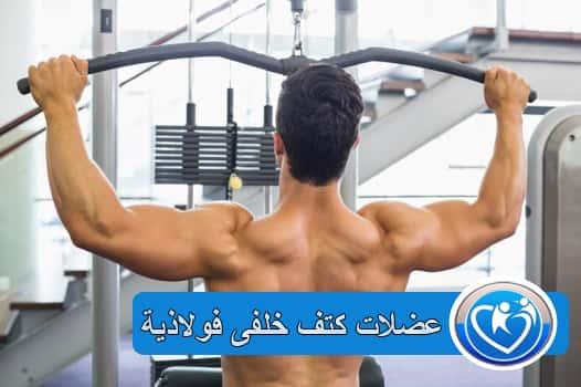 عضلات الكتف الخلفى الرائعة مع هذه النصائح