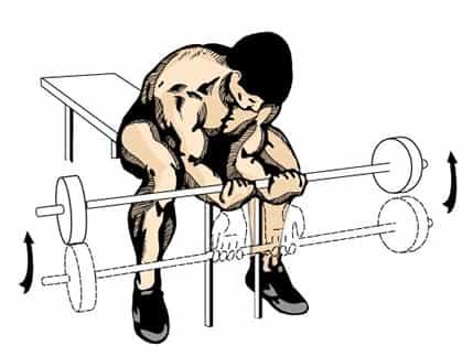 تمارين لتضخيم عضلات الذراع